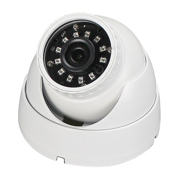 IP Dome Cameras