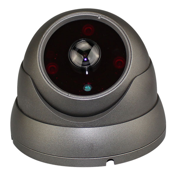 2MP RIVOLT IP Fisheye 180 Degree DOME Camera